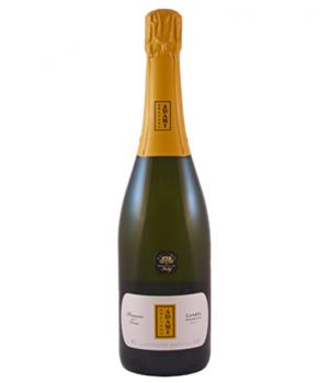 Шампанское Adriano Adami Dei Casel
